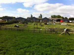 hadleigh farm 3