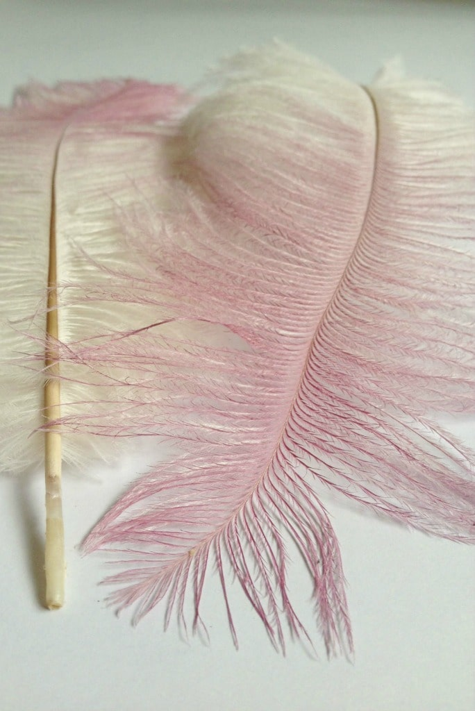spray painted ombre feathers
