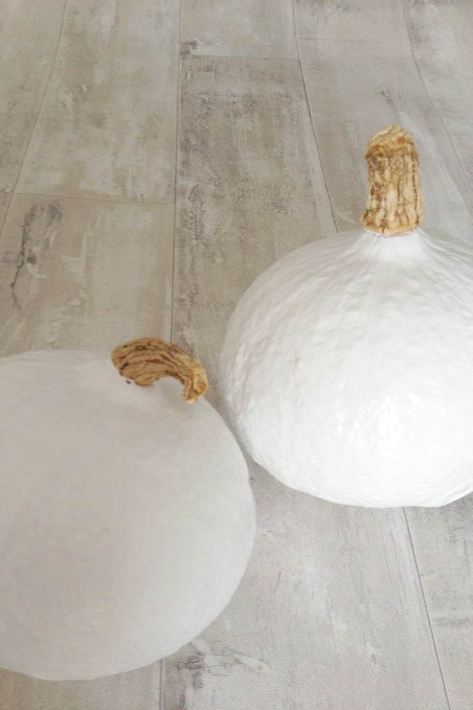 how to make your own white pumpkins