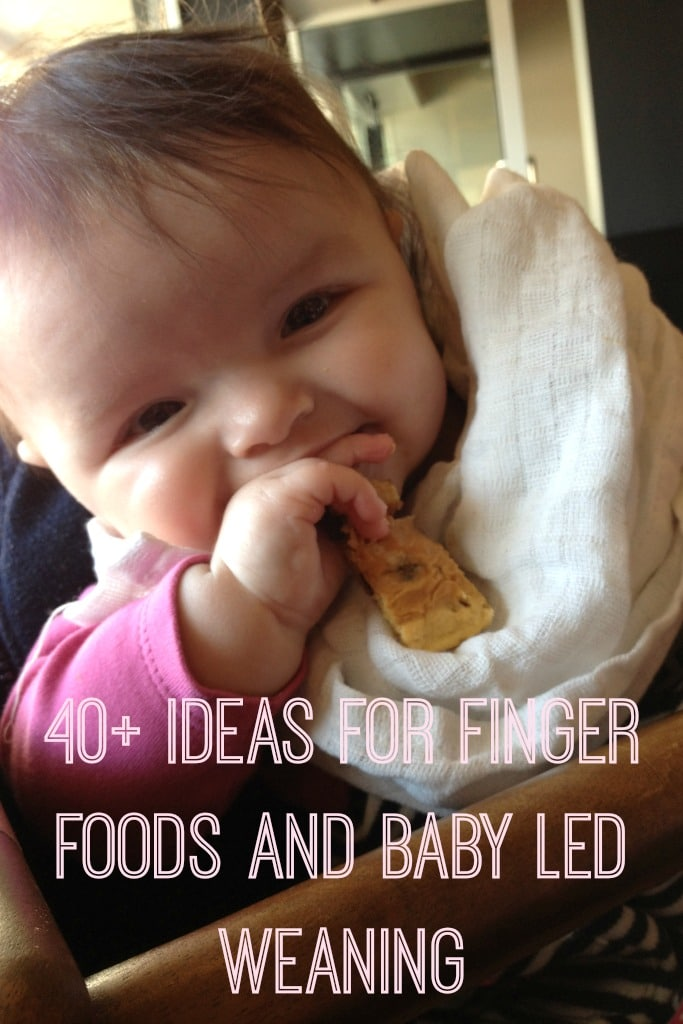 ideas for finger foods and baby led weaning