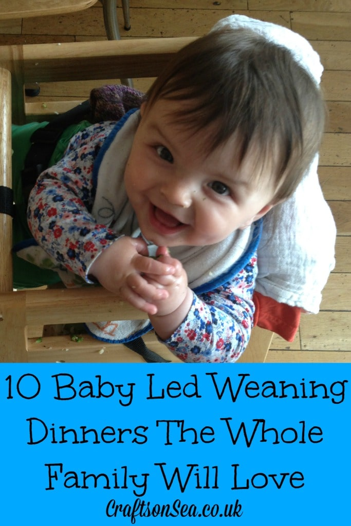 Baby led weaning dinners the whole family will love
