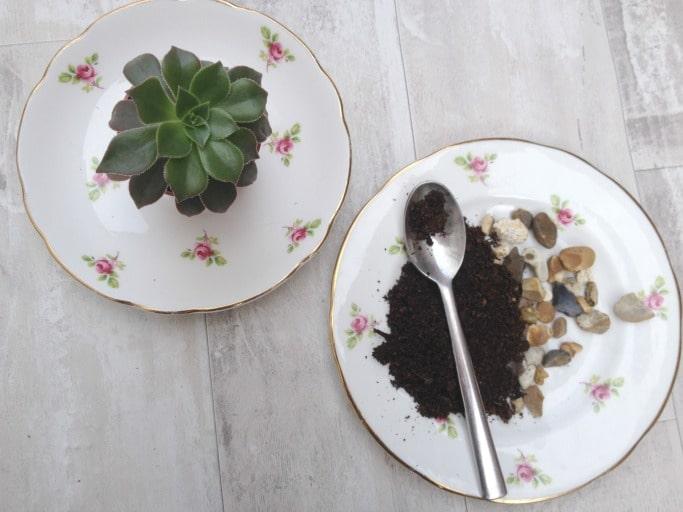 DIY Teacup planter materials